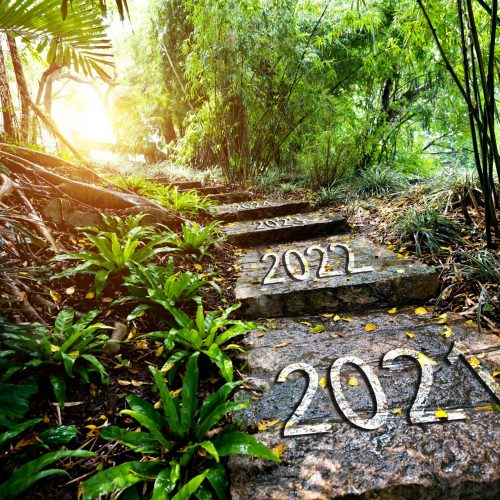 How to Achieve your 2020 Goals in 2021